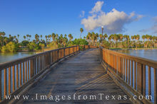 resaca, brownsville, texas coast, border town, palm trees, south texas, morning, texas southmost college, bridge
