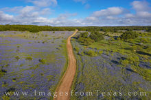 Bluebonnets, drone, aerial view, landscape, hill country, poppies, prickly poppies, 107, dirt road, backroad, rural