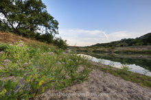 October Wildflowers on the Pedernales River 1