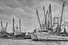 shimp boats, black and white, port isabel, south padre, texas coast, gulf of mexico, dock, harbor