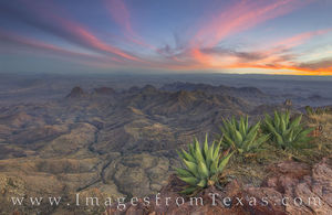 Big Bend Agave at the South Rim 2