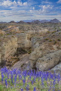Bluebonnets over Tuff Canyon 3