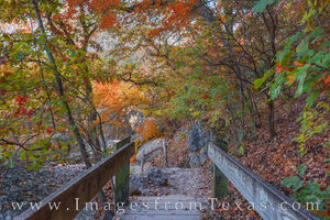 Bridge to Autumn Colors - Lost Maples 1112-2