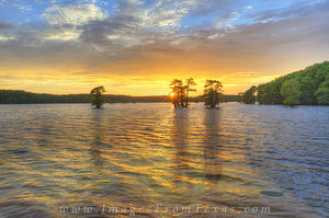 Caddo Lake Sunset 4