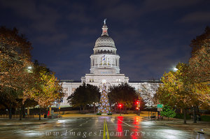 Christmas Tree Texas State Capitol 1