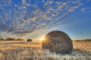 December Hay in Texas 1