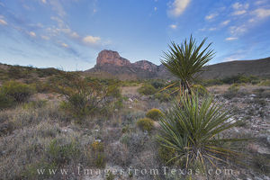El Capitan, Guadalupe Mountains 4