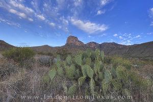 El Capitan Guadalupe Mountains 5
