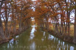 Fall Colors along the Medina River 14-1