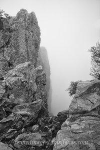 Fog on Emory Peak