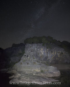 Goats under the Milky Way 1