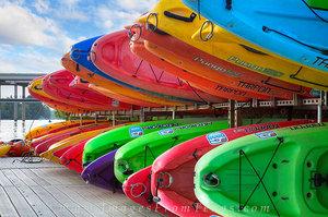 Lady Bird Lake - Zilker Park Canoes 1