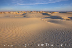 Late Morning at Monahans Sandhills State Park 1