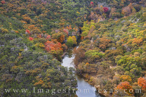 Lost Maples from a Bird's View 1110-1