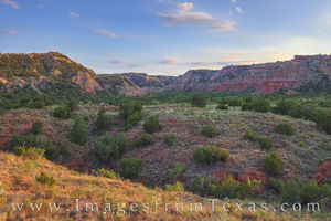 Palo Duro in Evening Light 724-1