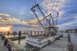 Shrimp Boat in Rockport Harbor 21