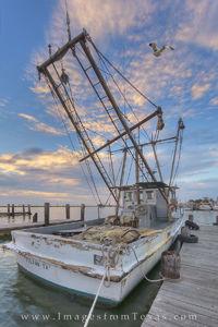 Shrimp Boat in Rockport Harbor 25