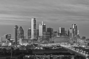 Skyline of Dallas Texas 612-1 black and white