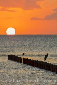 South Padre Island Sunset 1012-2