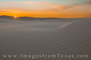 Monahans Sandhills State Park Images and Prints