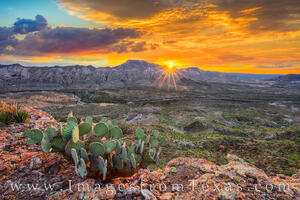 Big Bend Ranch State Park Images and Prints