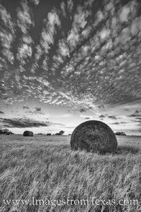 Sunset over Texas Hay Bales 2 black and white