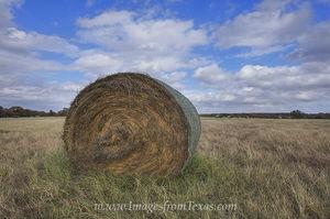 Texas Hay Bale Harvest 1