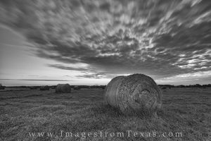 Texas Hay Bales at Sunrise in Black and White 1