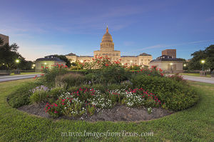 Texas State Capitol September Flowers 2
