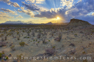 Tornillo Flats and the Chisos at Sunset 1