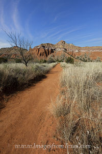 Trail to Capitol Peak