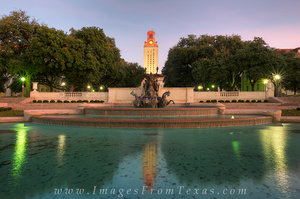 UT Tower from South Mall in November