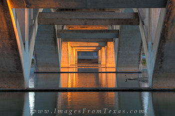 austin images,lady bird lake photos,lady bird lake,austin swan,lamar bridge,austin bridges
