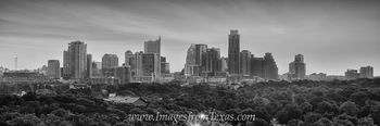 Austin Skyline Pano in Black and White 1