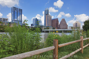 austin texas, downtown austin, austin skyline, zilker park, lady bird lake, zilker park hike and bike, austin texas photos, austin texas prints