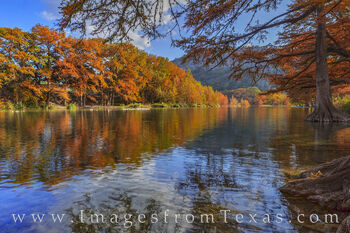 garner state park, cypress, sunshine, autumn, fall colors, texas state parks prints, prints, old baldie