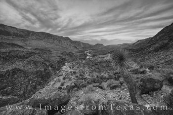 Big Bend Ranch Morning in Black and White 1