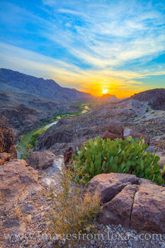 big hill, big bend, big bend ranch state park, rio grande, west texas, sunset, cactus, prickly pear, FM 170, lajitas, presidio