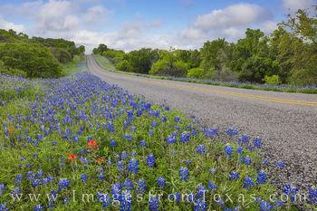 Bluebonnet Drives near Mason, Texas 408-7