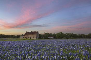 Bluebonnet House April Sunset 1