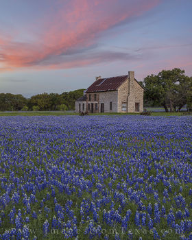 texas bluebonnets, bluebonnets, bluebonnet photos, marble falls, texas hill country, stone building, 281, texas wildflowers