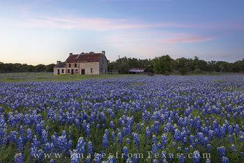 Bluebonnet House after Sunset 1