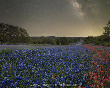 Bluebonnets and Paintbrush under the Milky Way 2