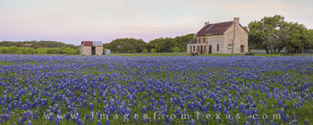 bluebonnets, texas bluebonnets, texas wildflowers, bluebonnet photos, bluebonnet panorarama, stone building, marble falls, marble falls, texas, texas landscapes