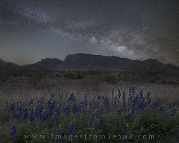bluebonnets, milky way, big bend national park, chisos mountains, texas desert, chihuahuan desert, texas night, texas landscapes