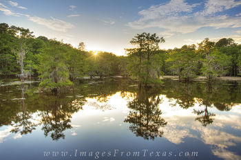 caddo lake state park,caddo lake images,caddo lake prints,texas sunsets,texas landscapes,east texas images