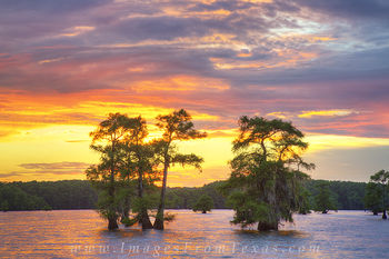 Caddo Lake Sunset 5