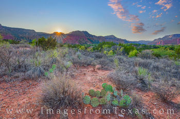 Caprock Canyon prints, Caprock Canyon State park, sunset, South Prong, South Prong camping, west Texas, prickly pear, camping, hiking