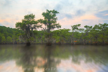 caddo lake sunrise,caddo lake photos,caddo lake prints,east texas images,texas sunrise,texas landscapes