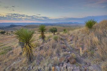 Davis Mountains Sunrise 6